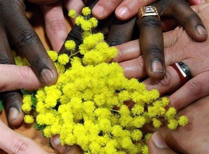 Riscossione: Ade-R, firmato il protocollo su molestie e violenza di genere