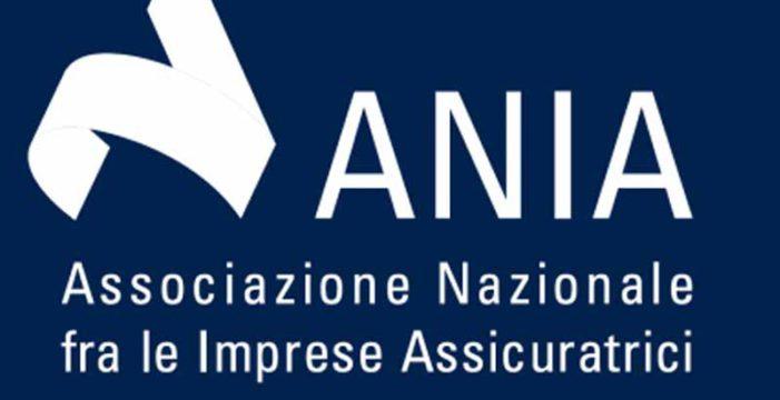 Ania: Rapporto Annuale 2020