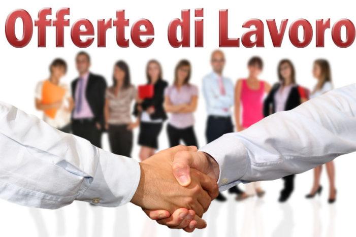 Firenze: offerte di lavoro in FINDOMESTIC !!!